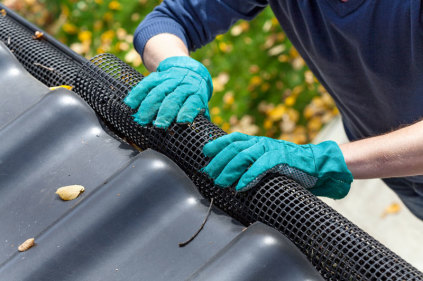 Leaf Guards prevent dirty gutters